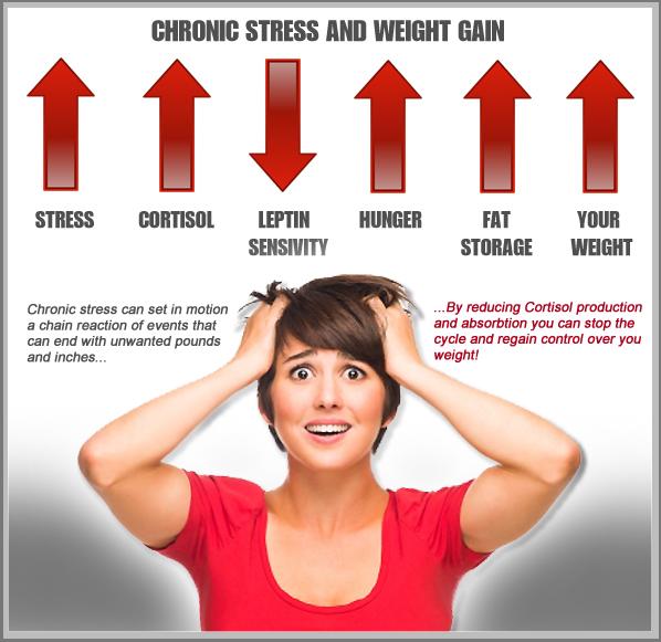 cortisol blocker infographic